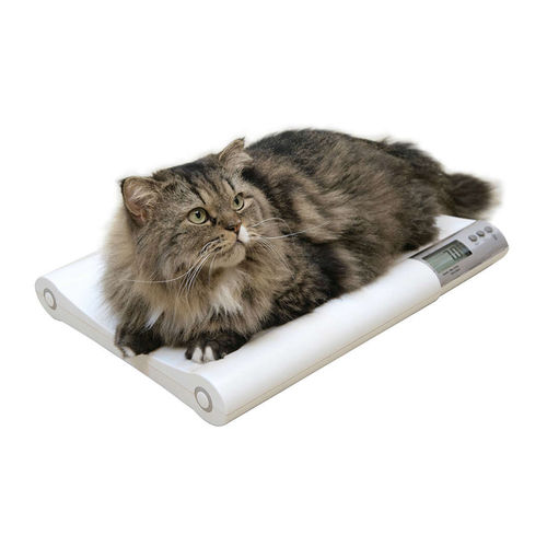 electronic veterinary weighing scale / for large animals / with LCD display / tabletop