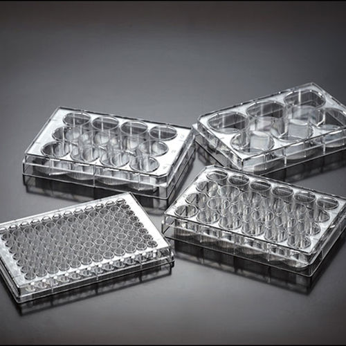 cell culture microplate / tissue culture / 96-well / 24-well