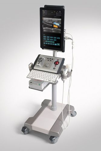 portable, with trolley ultrasound system / for multipurpose ultrasound imaging / B/W / color doppler