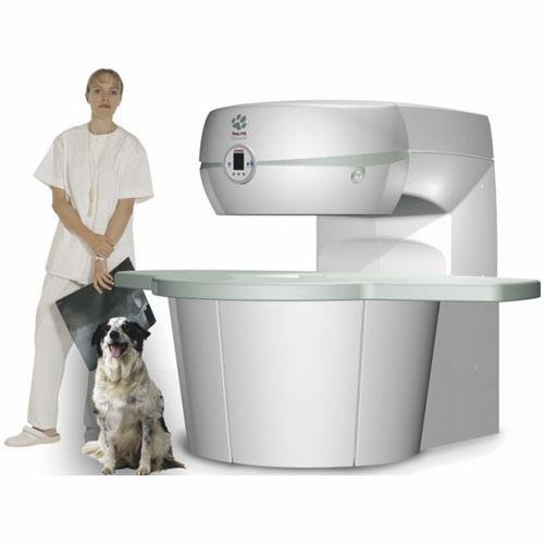 veterinary MRI system