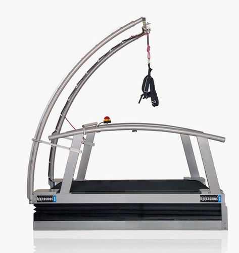 treadmill with harness system / with handrails