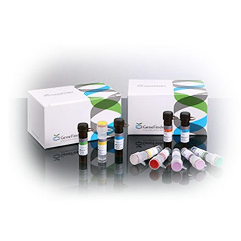 HPV test kit / for infectious diseases / for cervical cancer / cervical secretion