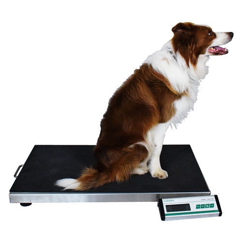 electronic veterinary weighing scale / for large animals / with LCD display / with separate indicator