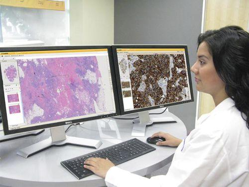 visualization web application / analysis / data management / for histology laboratories