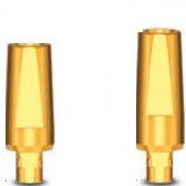 straight implant abutment / titanium / internal