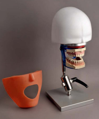 dental care patient simulator / head