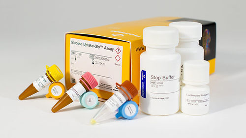 glucose uptake assay kit / for diabetes / for cancers / for medical research