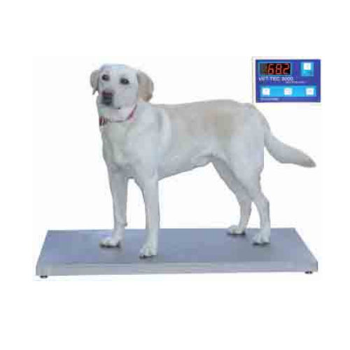 electronic veterinary weighing scale / for large animals / with separate indicator / platform