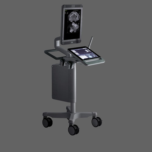 on-platform, compact ultrasound system / for urology ultrasound imaging / B/W / touchscreen