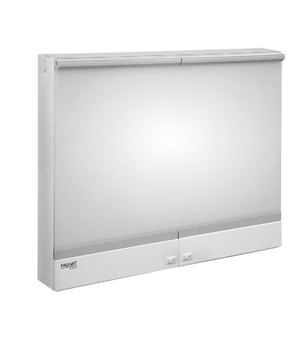 2-screen X-ray film viewer / white light / dental