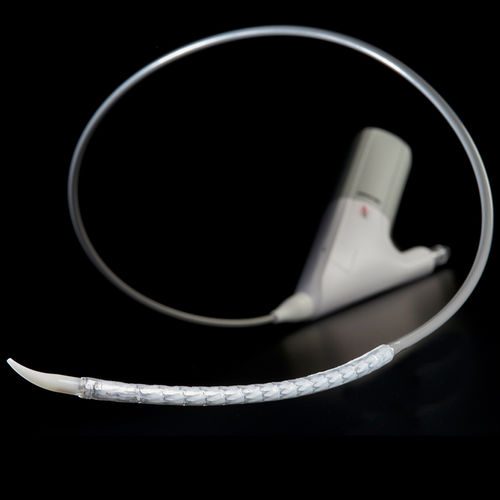 ascending thoracic aorta stent graft