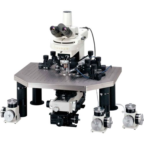 organic microscope / for research / infrared / trinocular