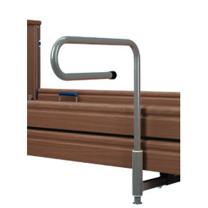 bed grab bar