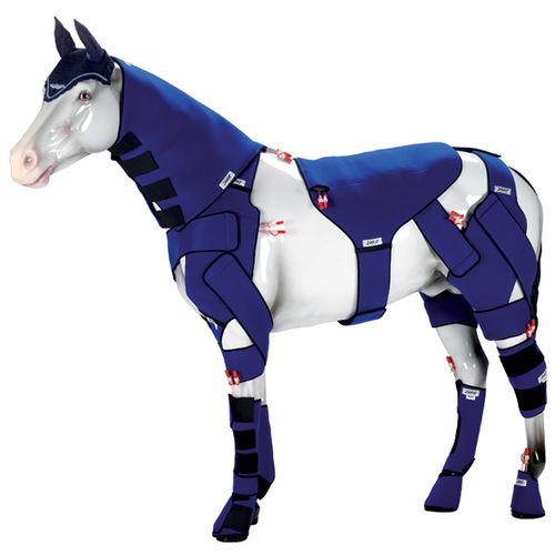 equine veterinary orthosis / ankle / knee / wrist