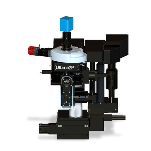 multiphoton microscope