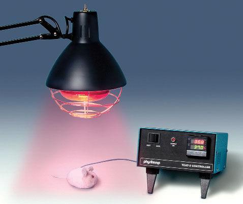 temperature controller / laboratory / for research / digital