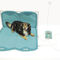 veterinary magnetic therapy unit / for pets / for equines / for camels