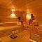 room sauna / sauna rocks