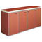 doctor's office cabinet / with shelf / with drawer / with door