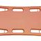 plastic backboard stretcher / with head immobilizer