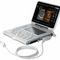 portable ultrasound system / for multipurpose ultrasound imaging / built-in console