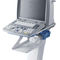 portable ultrasound system / for multipurpose ultrasound imaging / B/W / color doppler