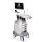 on-platform ultrasound system / for gynecological and obstetric ultrasound imaging / B/W / color doppler