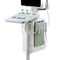 on-platform, compact ultrasound system / for anesthetic and intensive care ultrasound imaging / for urology ultrasound imaging / for emergency medicine ultrasound imaging