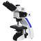 fluorescence microscope / for teaching / for biology / medical