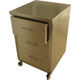 cabinet on casters / stainless steel / 3-drawer