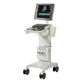 on-platform ultrasound system / for cardiovascular ultrasound imaging / for emergency medicine ultrasound imaging