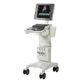 on-platform ultrasound system / for cardiovascular ultrasound imaging / for emergency medicine ultrasound imaging
