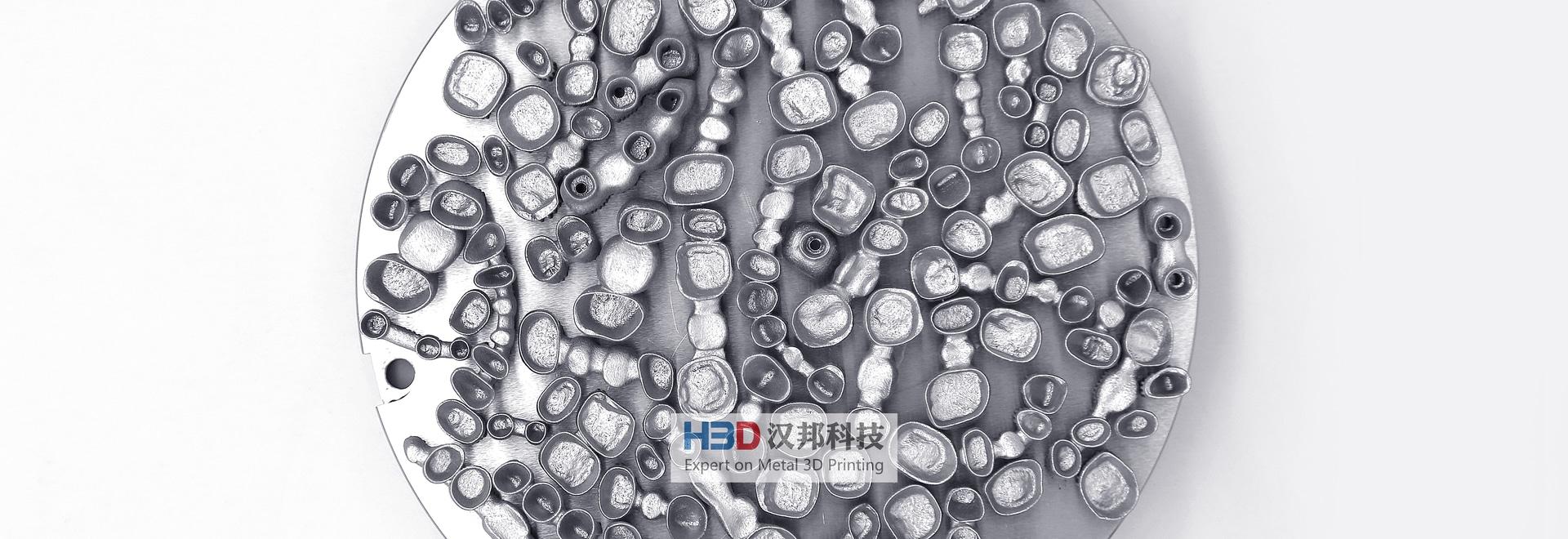 HBD Metal 3D Printing in Dental Application