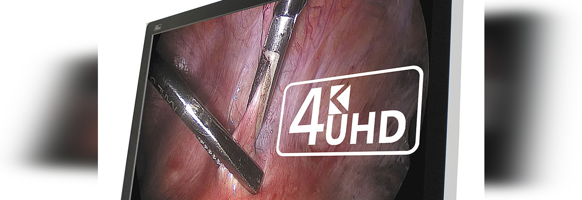 New 4K HD Every Pixel Breathes, Exposing Its Phenomenal Pixel-Perfect Details