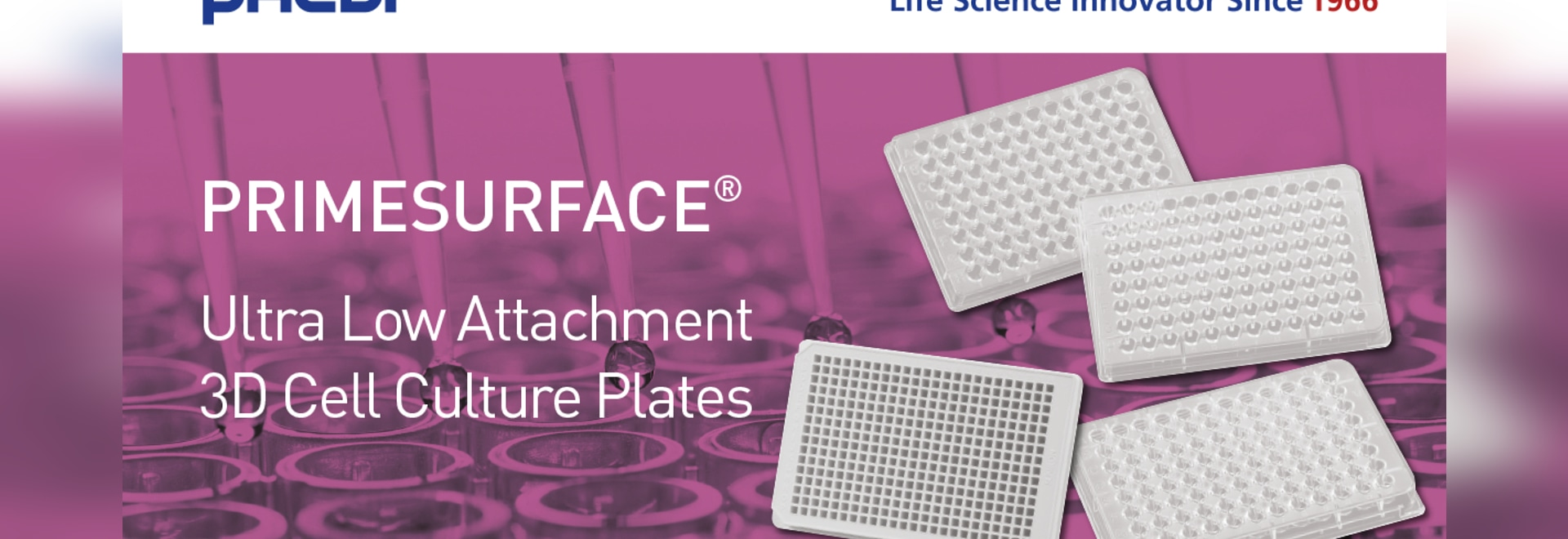 Ultra Low Attachment 3D cell culture plates