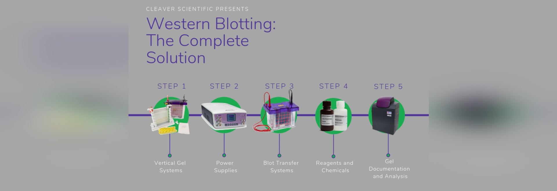 Western Blotting: The Complete Solution
