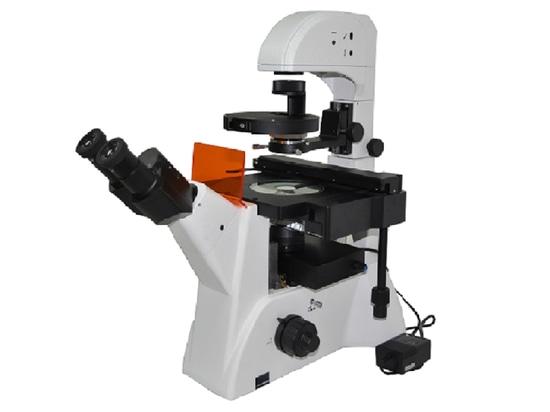 MF52-LED inverted fluorescence microscope