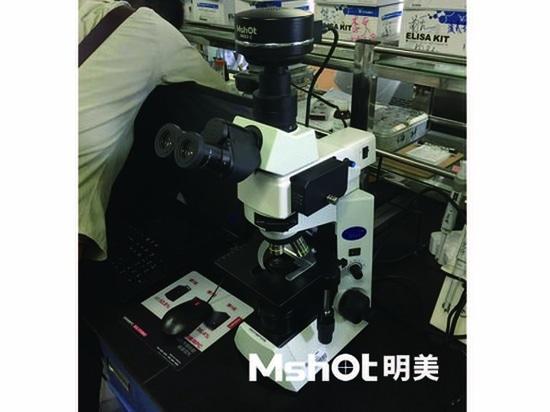 Fluorescence Microscope Solutions