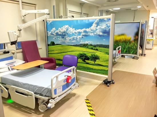 The National Hospital for Neurology and Neurosurgery