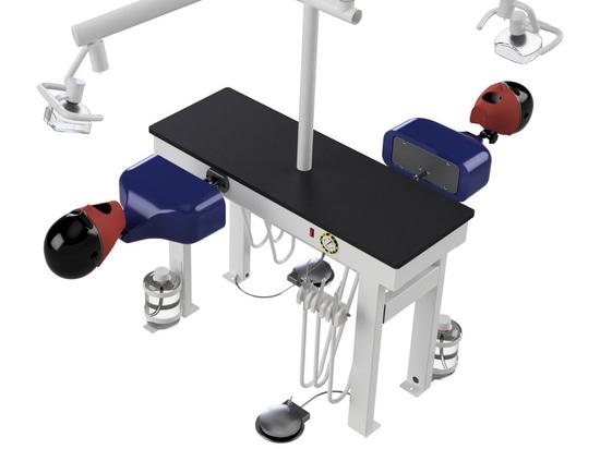 DualSim Clinical Practice Simulator