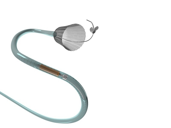 Pipeline Flex Embolization Device Approved for Small and Medium Brain Aneurysms