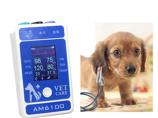 Small and convenient, simple operation, you can monitor your pet's index of vital signs anytime, anywhere.
