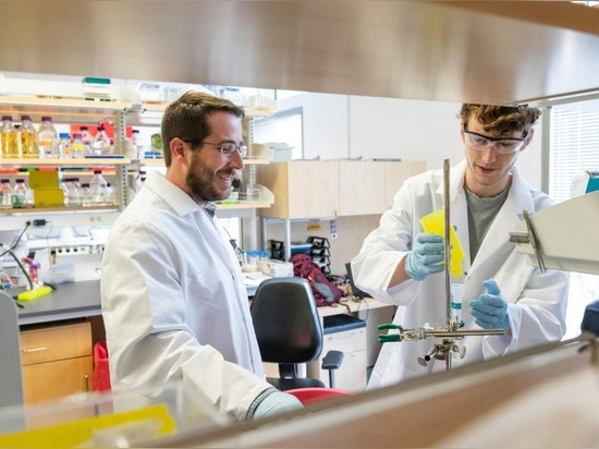 Jason S. McLellan, associate professor of molecular biosciences, left, and graduate student Daniel Wrapp, right, work in the McLellan Lab at The University of Texas at Austin Monday, February 17, 2...
