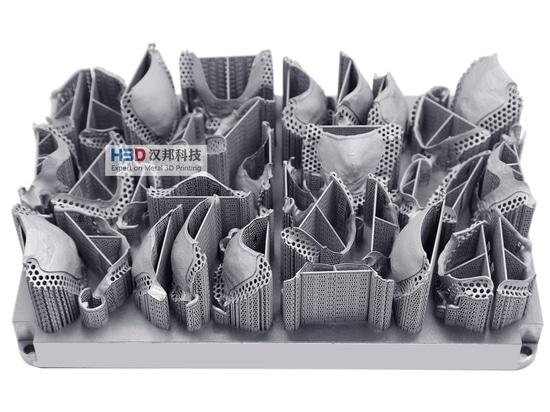 HBD Metal 3D Printing-Removable Partial Dentures