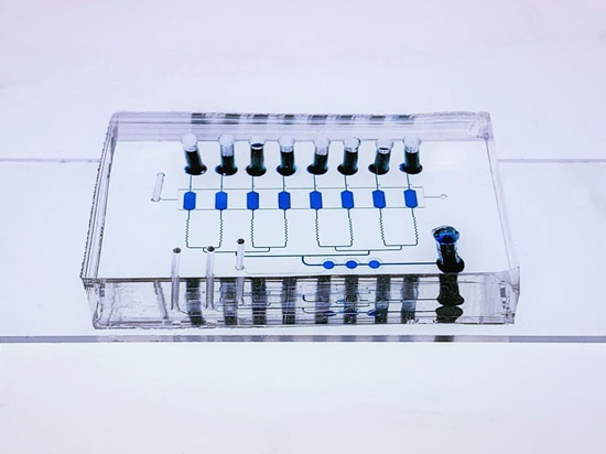 The multi-layer EV-CLUE chip device. The microreactors and connecting channels are visualized by filling with blue food dye. The bottom glass slide is patterned with nanoparticle structures and coa...