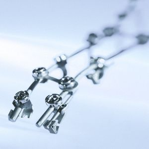 頚胸腰仙骨接合システム