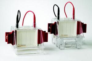 縦型電気泳動システム