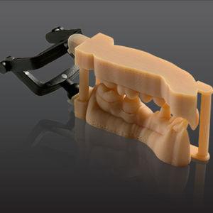 解剖模型用歯科用材料