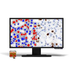 細胞構造画像ソフトウェアモジュール