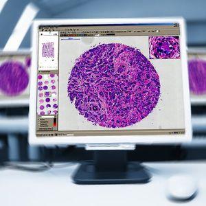 病理組織実験用ソフトウェアモジュール